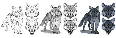 Wolf, op witte achtergrond, kleurenillustratie wordt geïsoleerd, geschikt als embleem of teammascotte, gevaarlijk bosroofdier, wo royalty-vrije illustratie