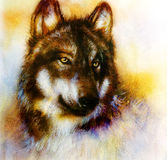 Wolf painting, color  background on paper , multicolor illustra Stock Photography