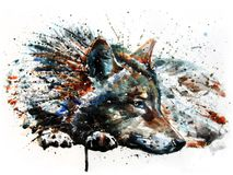 Wolf predator watercolor painting drawing. Wolf predator, watercolor painting, drawing wildlife, art for t-shirt, poster design, animals, predator vector illustration