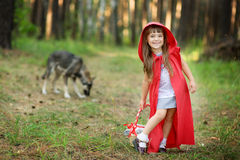 Wolf pursues the girl. Royalty Free Stock Photos