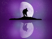 Wolf reflected in the moonlight. Illustration of wolf reflected in the moonlight Stock Photo
