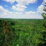 Wolf Ridge Overlook - Minnesota Royaltyfria Foton