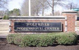 Wolf River Professional Center, Germantown, TN Imagen de archivo