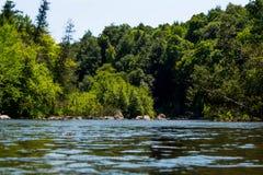 Wolf River Wisconsin royaltyfri bild