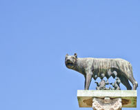 Wolf with Romulus and Remus Royalty Free Stock Images