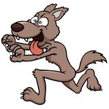 Wolf running Stock Images