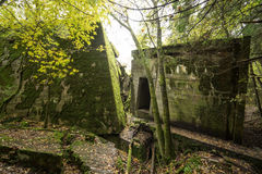 Wolf`s Lair,  Adolf Hitler`s Bunker, Poland. First Eastern Front military headquarters, World War II. Complex blown up, abandoned Stock Image