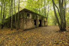 Wolf`s Lair,  Adolf Hitler`s Bunker, Poland. First Eastern Front military headquarters, World War II. Complex blown up, abandoned Royalty Free Stock Photography