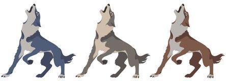 Wolf set royalty free illustration