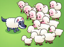 Wolf in sheep's clothes fooling a sheep herd Royalty Free Stock Images