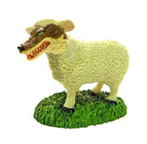 Wolf in sheep's clothing. Conceptual photo of a sheep with the face of a wolf snarling and bearing its big teeth...illustrating the common phrase of a Stock Images