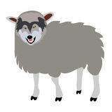 Wolf in sheeps clothing concept Stock Image