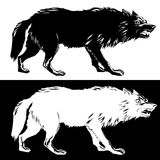 Wolf silhouette black and white. Vector illustration Stock Image