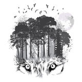 Wolf silhouette on forest background Stock Photos