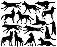 Wolf silhouettes Royalty Free Stock Images