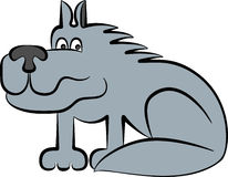 Wolf. Sitting frightened gray wolf, , a profile Stock Photos