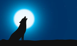Wolf sitting and roaring on the ground, Background is moon Stock Photography