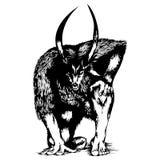 Wolf Sketch Lizenzfreie Stockbilder