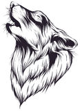 Wolf. Sketch head singing wolf on a white background royalty free illustration