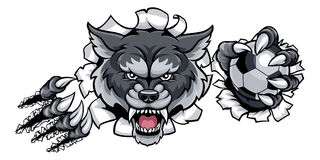 Wolf Soccer Mascot Breaking Background Images libres de droits
