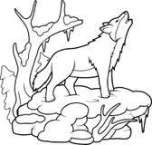 Wolf som tjuter på moonen Arkivbilder