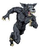 Wolf sports mascot or werewolf running Stock Photo