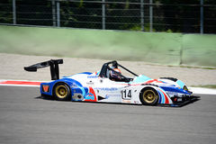 Wolf Sports Prototype in action Stock Image