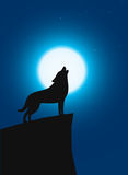 Wolf standing and roaring on the top of the cliff Royalty Free Stock Images