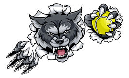 Wolf Tennis Mascot Breaking Background Image stock