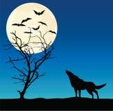 Wolf und getrocknet herauf Baum Lizenzfreie Stockbilder