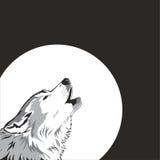 Wolf und Mond. lizenzfreie abbildung