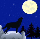 Wolf wails on moon Stock Photos