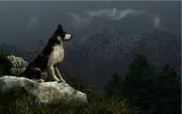 Wolf Watch stock de ilustración
