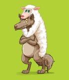 Wolf wearing sheep fur Stock Images