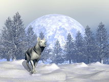 Wolf in winter - 3D render Royalty Free Stock Photo