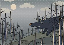 Wolf in the winter wood Stock Images