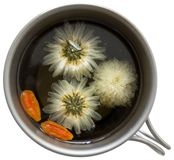 Wolfberry chrysanthemum tea Royalty Free Stock Photo