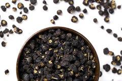 Wolfberry nero-- Barbarum del Lycium Fotografia Stock Libera da Diritti