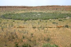 Wolfe Creek Meteorite Crater. Australia. Australian famous Wolfe Creek Meteorite Crater. Australia. High Angle View. Western Australia Stock Photos