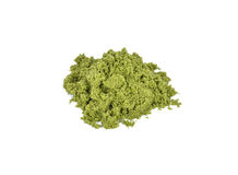 Wolffia globosa or Fresh water Alga, Water Meal, Swamp Algae. Royalty Free Stock Images