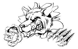 Wolfgreiferdurchbruch Stockbild