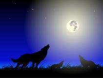 Wolfs en maan royalty-vrije illustratie