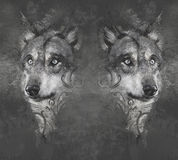 Wolfs. Tattoo Design Over Grey Stock Photography