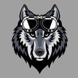 Wolfshoofd die een beschermende bril dragen stock illustratie
