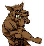 Wolfsmascotte het vechten Royalty-vrije Stock Afbeelding