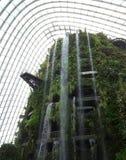 Wolk Forest Water Fall Royalty-vrije Stock Foto