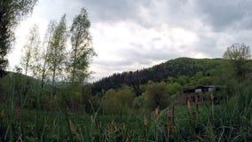 Wolk, gebied van de lentegras en berg stock video