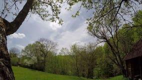Wolk, gebied van de lentegras en berg stock videobeelden