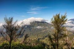 Wolke auf Berg mit blauem Himmel zwischen auf Baum stockbild
