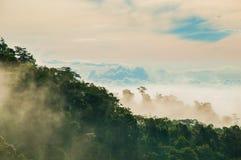 Wolke und Baum Stockfotos